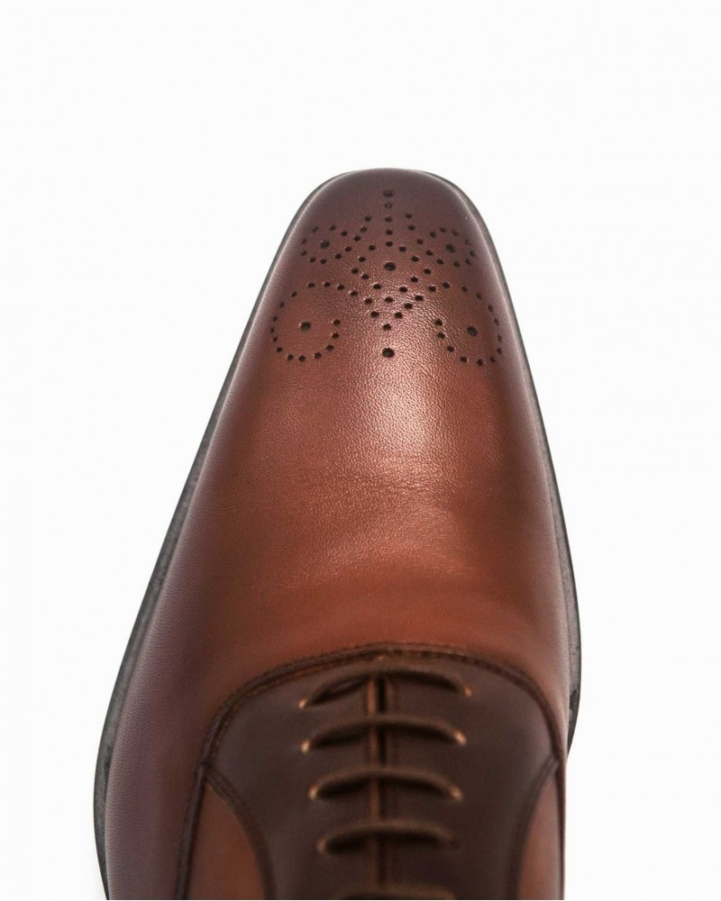 Elastico Two-Tone Oxford・Cognac/ Brown