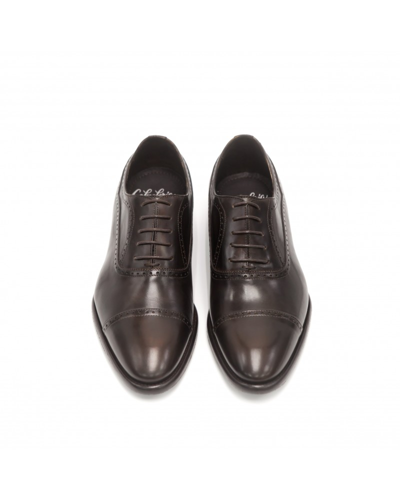 Calzoleria Toscana Captoe Oxford · Dark Brown